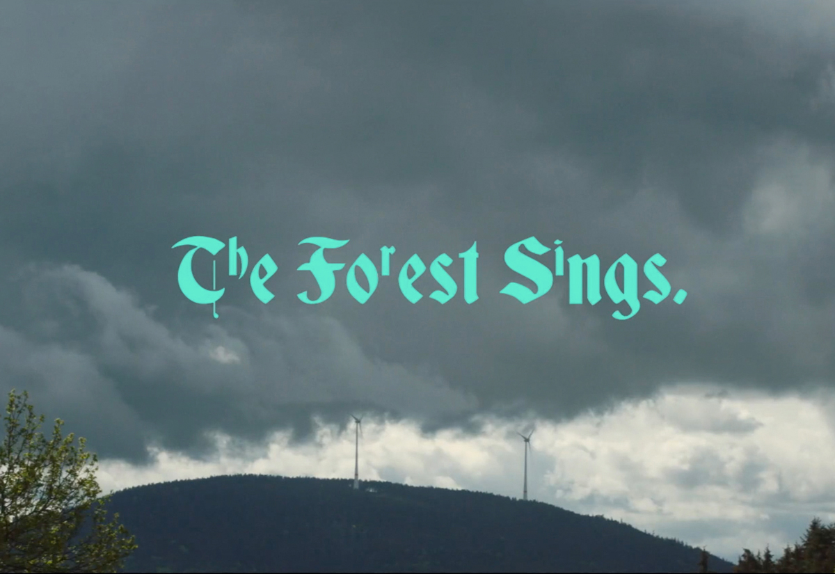 The Forest Sings Thumbnail